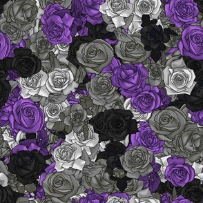 Ace Pride Roses