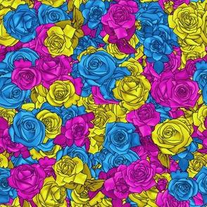 Pan Pride Roses