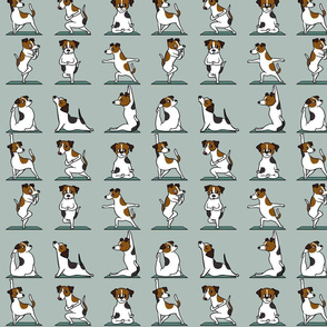 Jack Russell Terrier Yoga_8x8