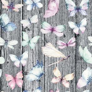 butterfly grey wood