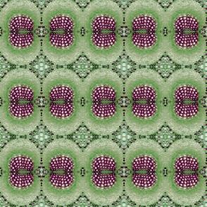 Dandelion Leaf Veins - Green and Purple