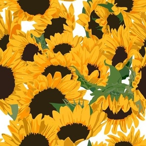 Jumbo bold sunflowers 12x12
