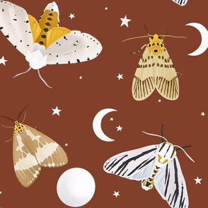 Moths and moons