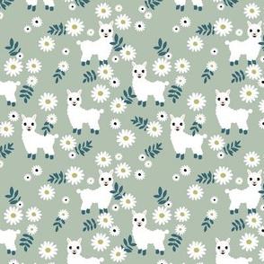 Cute boho alpaca garden and daisy flowers sweet nursery spring summer llama pattern girls neutral green mint mist white