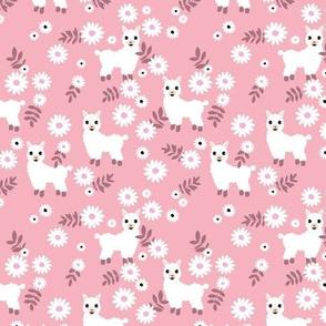 Cute boho alpaca garden and daisy flowers sweet nursery spring summer llama pattern girls pink mauve white