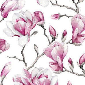 Magnolias / White Background / Small Scale