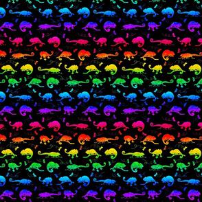 CHAMELEON Rainbow Small