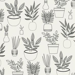 Plant life / Plant lovers / Plants / Plant / Simple plant fabric