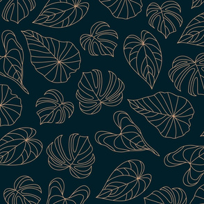 minimalist monstera leaves