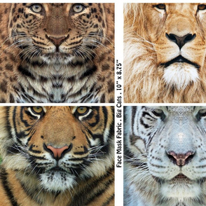 Tigers, Lion and Panther faces for face masks