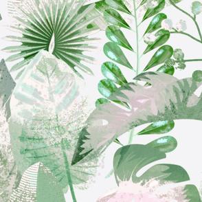 Large tropical foliage