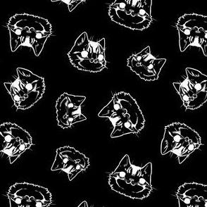 Noble Cat Faces