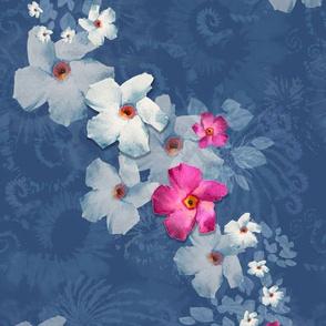 Graceful Flow of Mandevilla Blooms