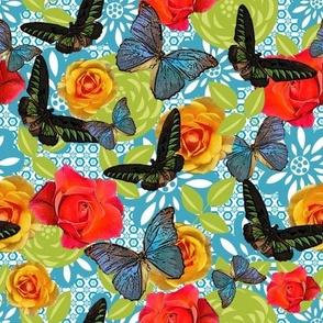 Butterfly Bohemia