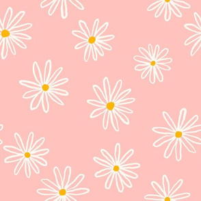 White chamomile flowers on pink