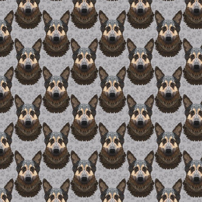 SP 10 2020 LORD PATTERN PAWS LARGE