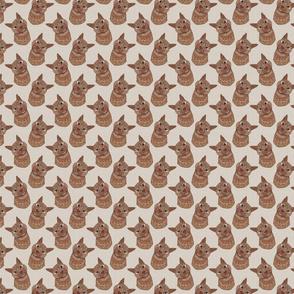 Orange Tabby Cat XS