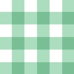 Mint Green  Gingham Plaid -2 inch check