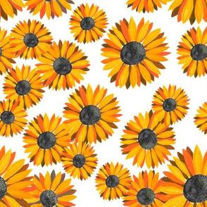 Sunflowers Pattern - Orange