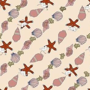 Sea shore shells