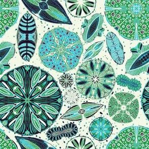 Microscopic Diatoms, 8 inch, blue green