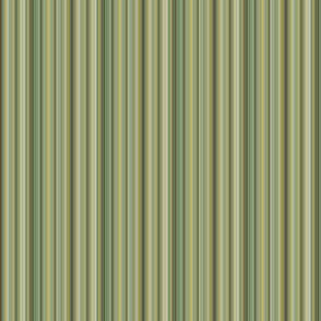 Pimpernel Stripe