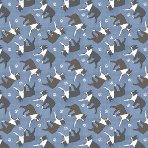Trotting Boston Terriers and paw prints - faux denim