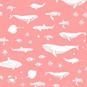 White_marine_animals_and_fish_on_a_pink_background