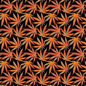 Cannabis leaves graffiti style