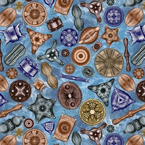 Ernst Haeckel Diatoms Fall Colors Over Blue Water