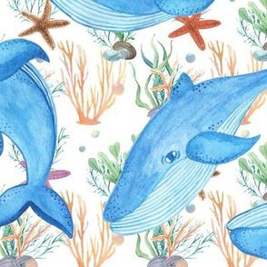 Playful Ocean Whales