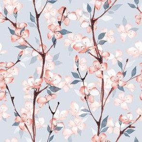 Blossom. Blue and pink