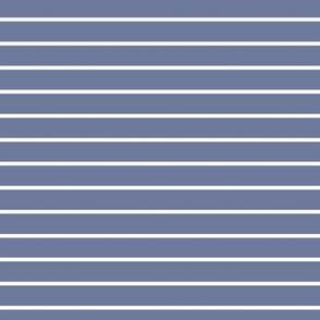 Stonewash Grey Pin Stripe Pattern Horizontal in White
