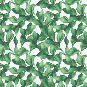 Medium Watercolor Leaves