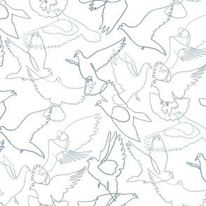 Pigeon Lines
