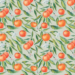 Medium Hand-Drawn Tangerine