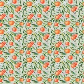 Small Hand-Drawn Tangerine