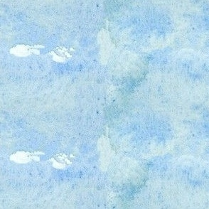 Faded Blue Jean Wash