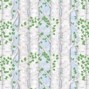 Birch Tree Spring Leaves