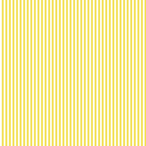 Illuminating yellow and white stripe