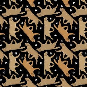 Trotting yellow Labrador Retrievers and paw prints - black