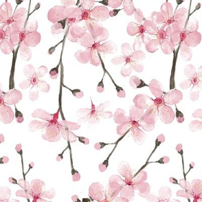 pink cherry blossom watercolor rotated for Jeanne