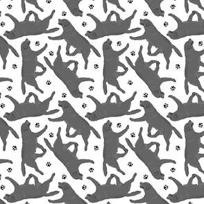 Trotting black Labrador Retrievers and paw prints - black