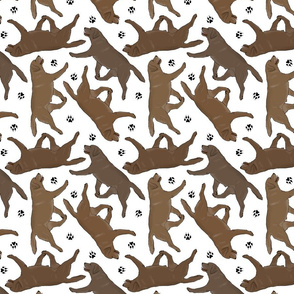Trotting chocolate Labrador Retrievers and paw prints - white