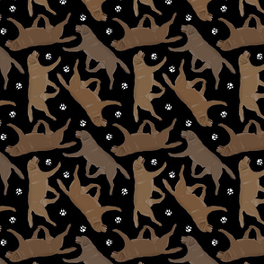 Trotting chocolate Labrador Retrievers and paw prints - black