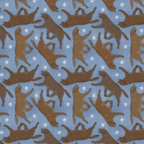 Trotting chocolate Labrador Retrievers and paw prints - faux denim