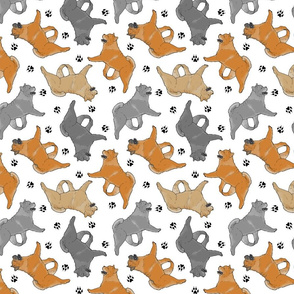 Trotting smooth coat Chow Chow and paw prints - white