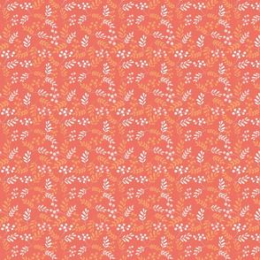 coral_orange_flowers