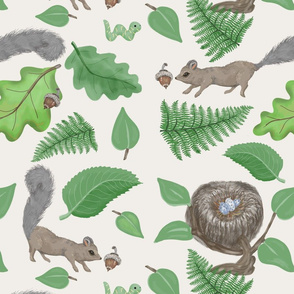 Woodland Tree Squirrels