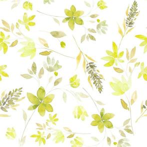 lavanda green L